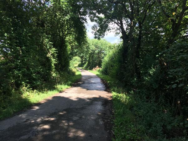 Fußweg nach Ulmen